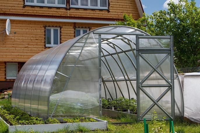 szklarnia do uprawy warzyw